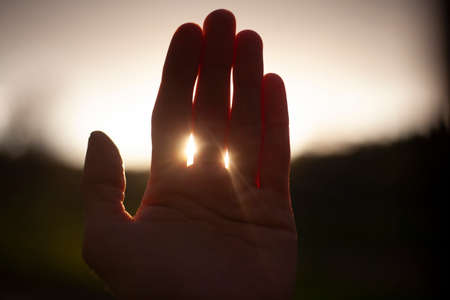 The sun through the palm of your hand. The rays of light at sunset penetrate through your fingers. Simple picture with a hand. Calm background. Beauty is here and now. Male hand.