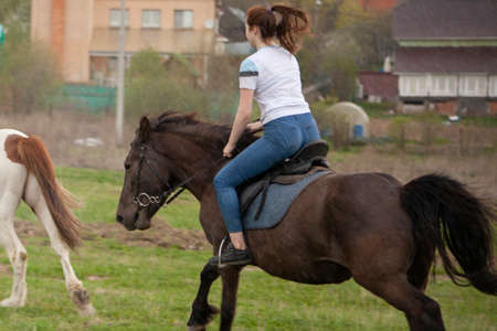 The girl is riding a horse. Teenagers learn to ride horses at a rider school. Exercises with animals. The girl sits beautifully on a horse.