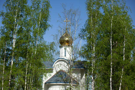 Chapel with a golden dome. Temple among the birches. Orthodox church among green leaves of birches. White stone traditional temple in Russia. Standard-Bild