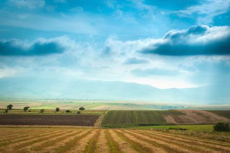 Open field landscape from Romania. Stok Fotoğraf