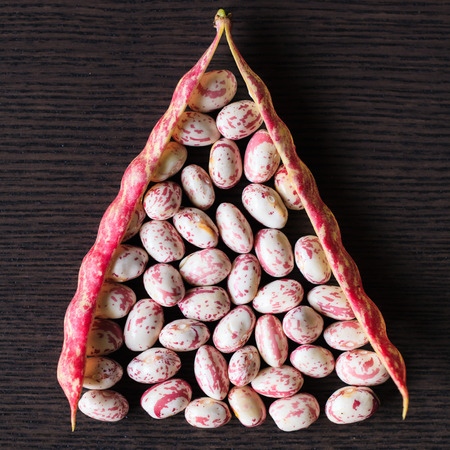 Pink spotted Borlotti or Cranberry beans