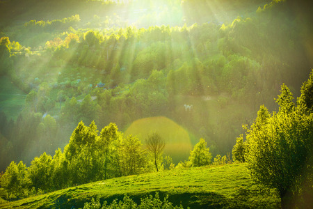 Spring landscape with sunrays