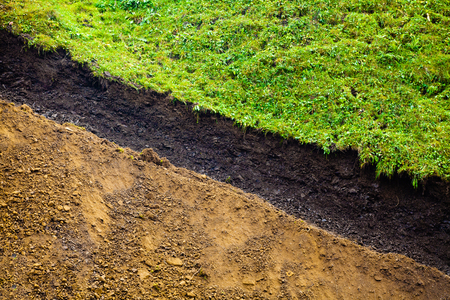 Layers of soil, section cut by bulldoser