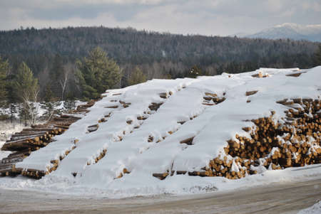 icey: Snowy Stacked Logs