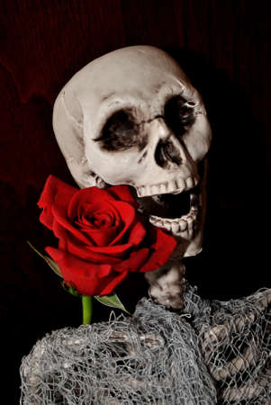 happier: Laughing Skull with Red Rose Stock Photo