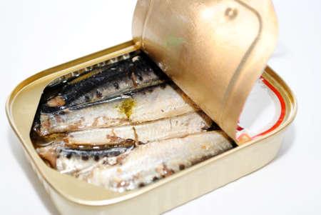 Canned Sardines Reklamní fotografie