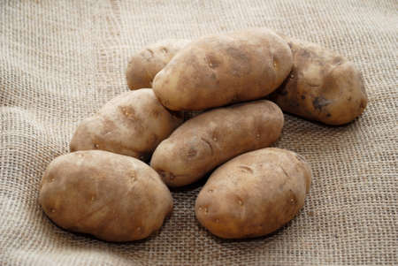 rooting: Many Whole Potatoes