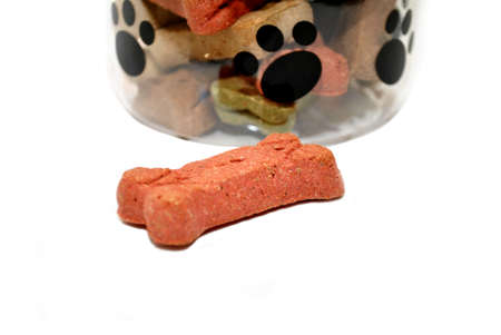 Dog Biscuit in Front of a Jar of Biscuits photo