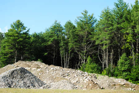heaped: Heaped Gravel in Front of Natures Trees