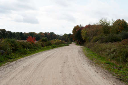 dirtied: A Country Dirt Road with Some Fall Foliage