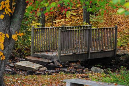 bridged: Old Wooden Bridge with an Autumn Background