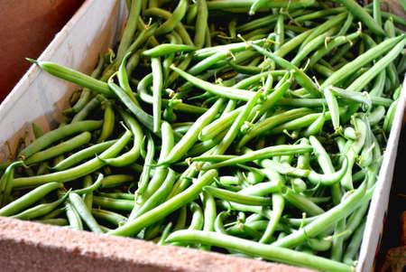 ejotes: Cosechadas habas verdes frescas en el mercado