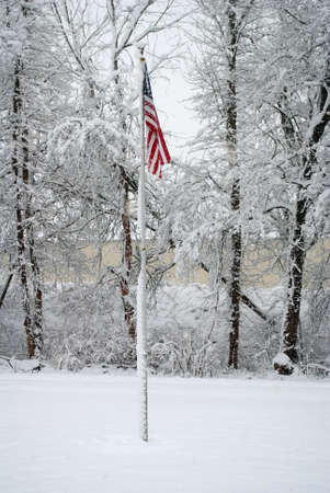 stormed: Snowing with an American Flag