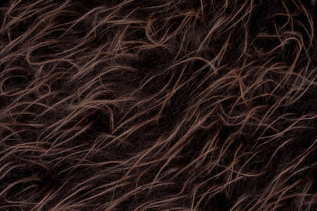 Decorative Long Fur Background Stock Photo - 7023932