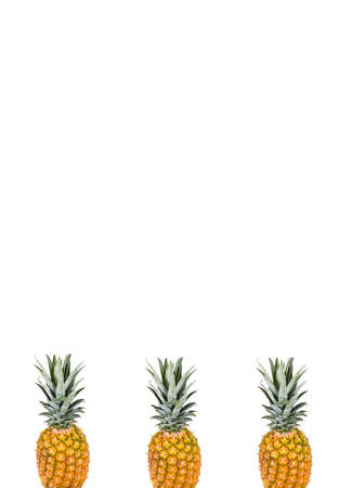 Fresh Pineapples background on a white background