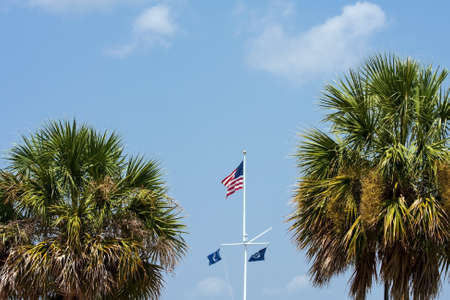 flagpole: Flagpole with American and South Carolina Flags in between palmtrees