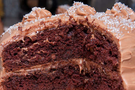 Chocolate layered cake with chocolate frosting and spinkles