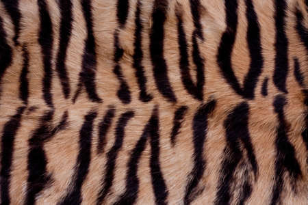 Brown and black animal fur background  Stock Photo