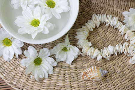 Spa design with herb and daisy Stock Photo