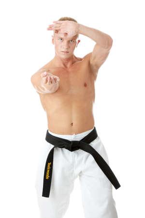 Taekwondo fighter isolated on white background Stock Photo - 5394105