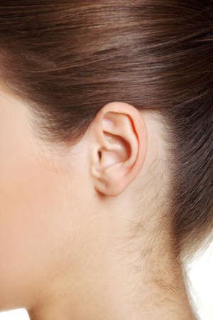 An ear closeup. photo