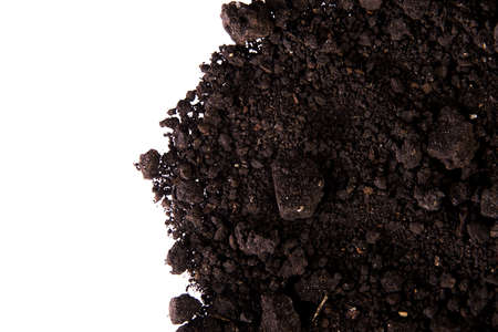 Dirt isolated on white background  photo