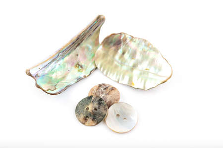 Shining mother of pearl and pearl buttons