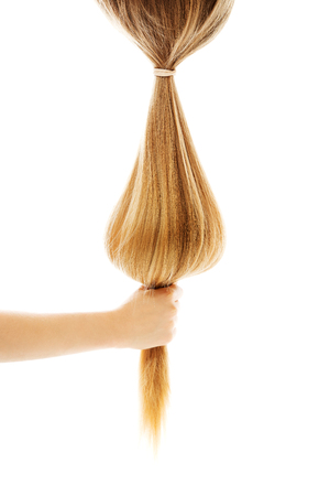 Long blond human hair close-up, isolated on white.