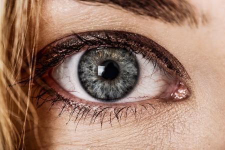 Human blue eye, close view