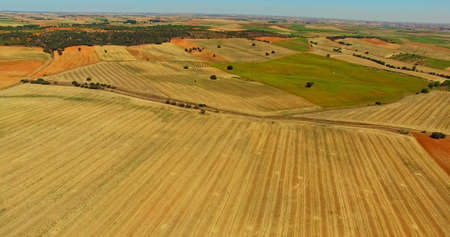 Farming landscape from air