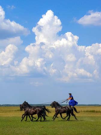 Horse show in Hungarian puszta
