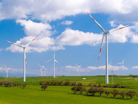 Wind farm in a field
