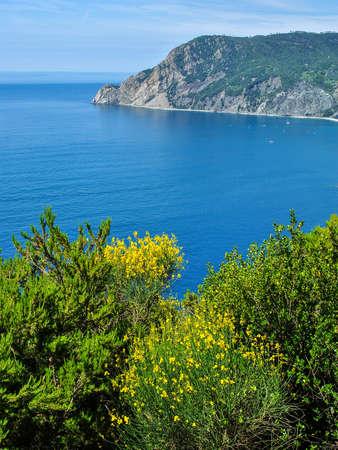 monterosso: Panoramic view of the coastline near Monterosso, one of the Cinque Terre in Italy