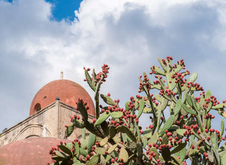 hermits: Prickly pears plant with fruits; red dome of a church in background (Palermo, Sicily) Stock Photo