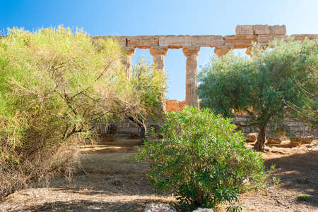 agrigento: The colonnade of the temple of Juno surrounded by trees in the Valley of the Temples of Agrigento Stock Photo