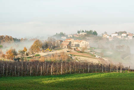 farmstead: Vineyards and a farmstead in the hills of Oltrep Pavese nothern Italy