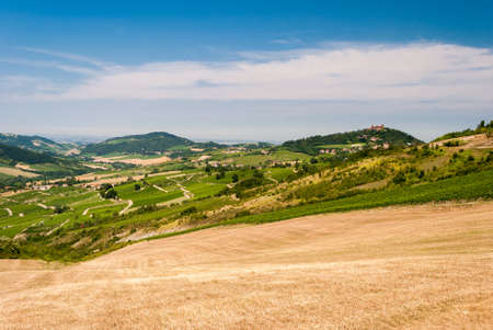 Cultivated hills in Oltrepo Pavese (Lombardy, Italy)