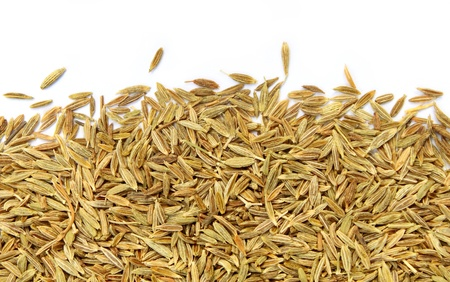 Cumin seeds photo