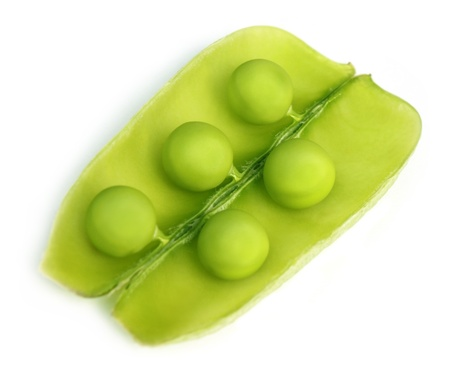Green peas on bean Stock Photo - 8854330