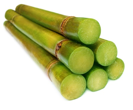 Bunch of fresh sugar cane over white background