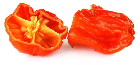 hottest: World hottest Bhut Jolokia chili pepper or the Naga Morich of Bangladesh