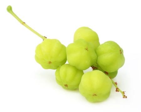 Phyllanthus acidus or Orboroi fruit of South East Asia