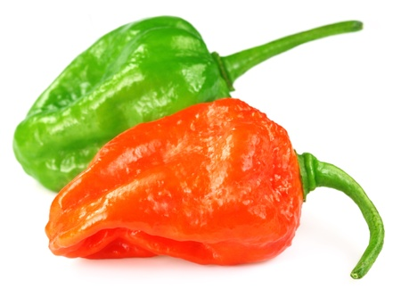 subcontinent: Two Naga Chilies of Indian Subcontinent