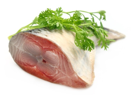 Tail portion of the famous Ilish fish of Bangladesh with coriander leaves Stock Photo - 15048403