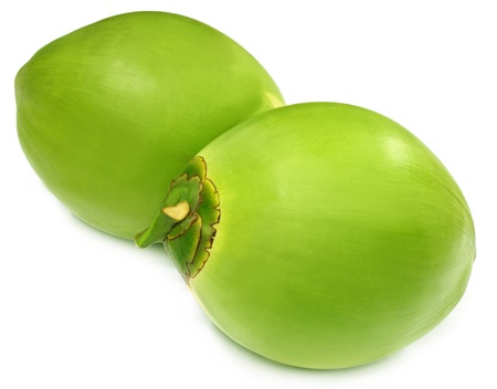 Green coconuts over white background photo