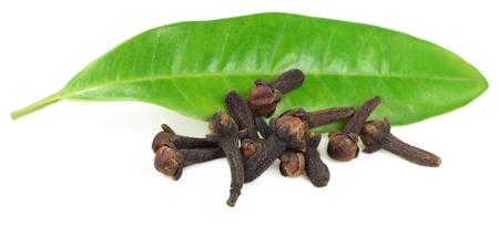 Dientes de clavo de olor frescas con hoja verde