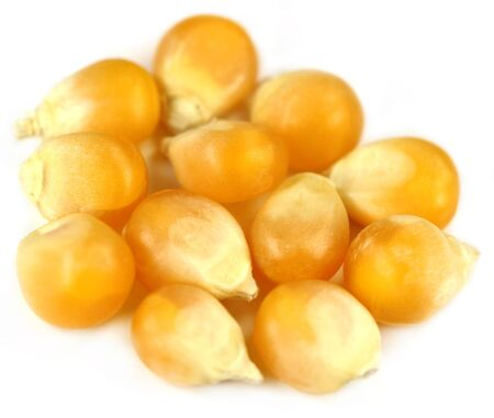 Corns over white background Stock Photo - 15777933