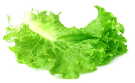 Fresh lettuce over white background photo