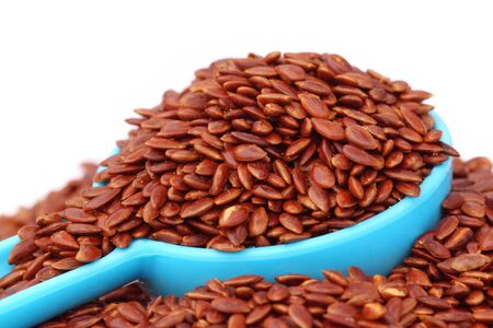 Flax or edible tisi seeds Stock Photo - 18571076