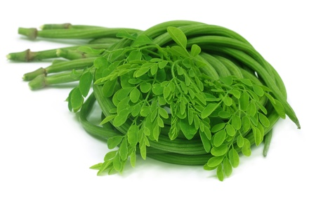 Moringa Oleifera or sonjna with fresh leaves photo